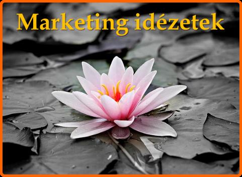 Marketing idézetek: A 12+1 legfontosabb online marketing idézet