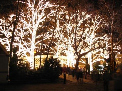 New York karácsony, kivilágított fák
