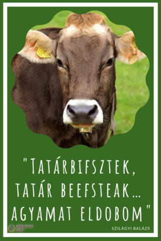 Tatár bifsztek, tatárbifsztek, tatát beefsteak helyesírása idézet