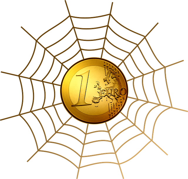 Euro és pókháló