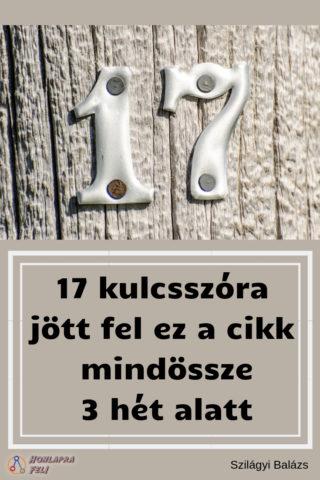 hány kulcsszóra lehet egy cikket megírni 17
