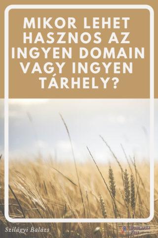 Mikor lehet hasznos az ingyen domain tárhely