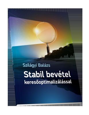 Stabil bevétel keresőoptimalizálással borító 3D látványterv 400pixel