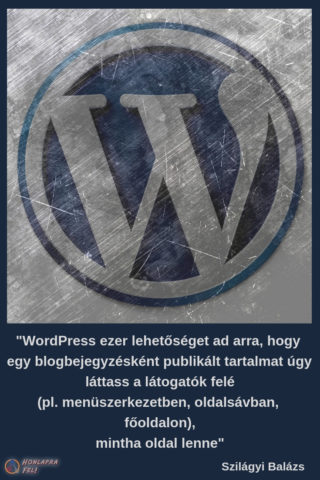 wordpress oldalak vagy bejegyzések lehetőség