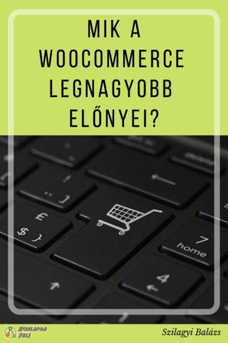 zseniális wordpress woocommerce webáruház előnyei